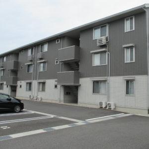 Piccolo Pino島町C320号室 [2LDK]