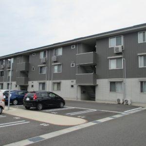 Piccolo Pino島町C棟223号室 [2LDK]