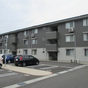 Piccolo Pino島町C225号室 [3LDK]