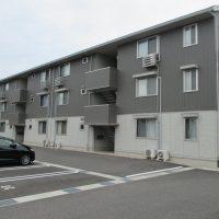 Piccolo Pino島町(ピッコロ ピーノ)C223号室 [2LDK]